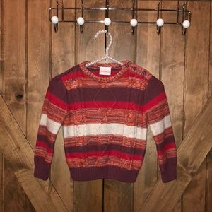 Handsome Hanna Anderson boys sweater